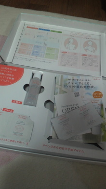 +++ りり☆Blog evolution +++ 広島在住OLの何かやらかしてる日記-2012041220100000.jpg