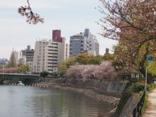 +++ りり☆Blog evolution +++ 広島在住OLの何かやらかしてる日記-20120415_013.jpg