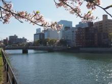 +++ りり☆Blog evolution +++ 広島在住OLの何かやらかしてる日記-20120415_022.jpg