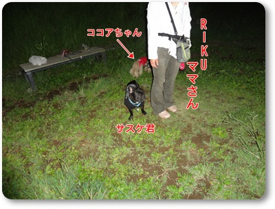DSC03616.jpg