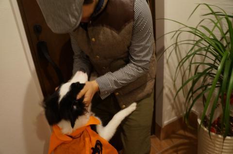 Halloween58