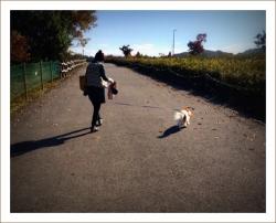 photo874.jpg