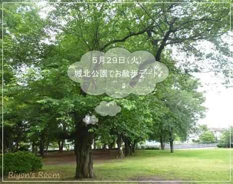 城北公園①