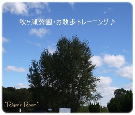 散トレ10月①