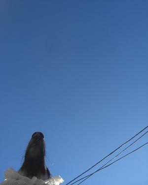 空がきれいだ