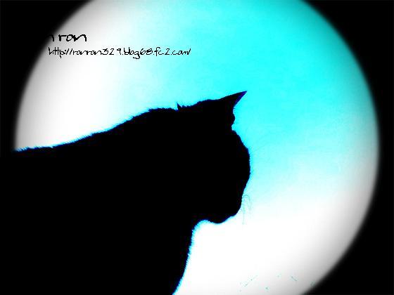 20121125photo11.jpg