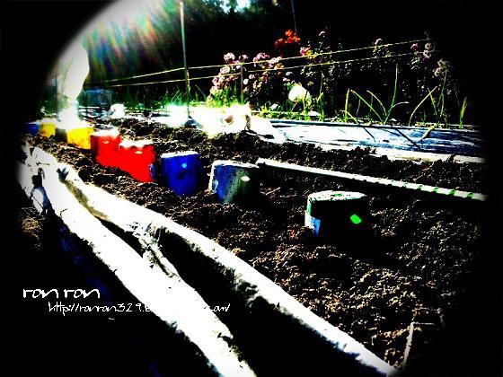 20121125photo9.jpg