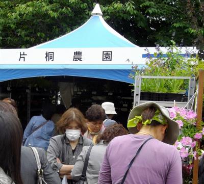 花市場-片桐農園
