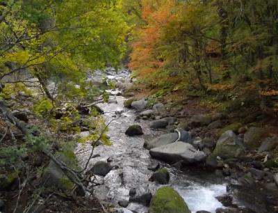 羽衣の滝から流れる川