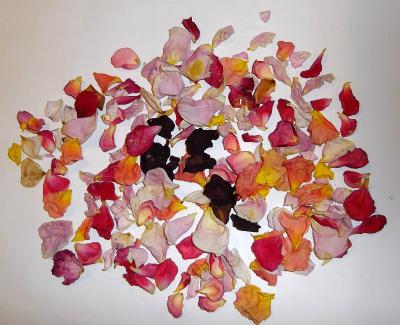 乾燥した花びら