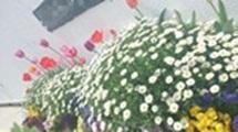 001_20130405173114.jpg