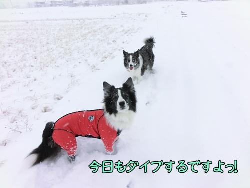 20121220b-5CIMG5645.jpg