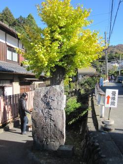 鷺の森神社-1