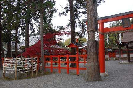 吉田神社-4