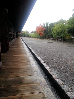 20121111_150826.jpg