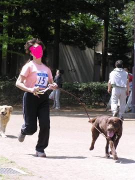コピー ~ ドドッグマラソン2