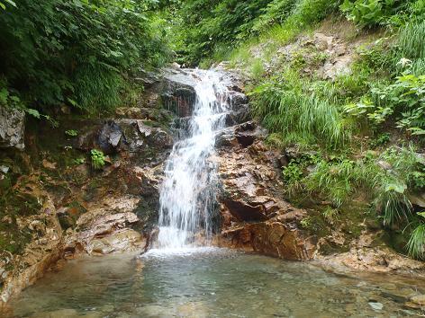 ウツボキ沢左股の小滝