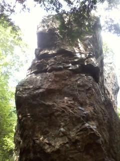 ちっぽけ岩南面