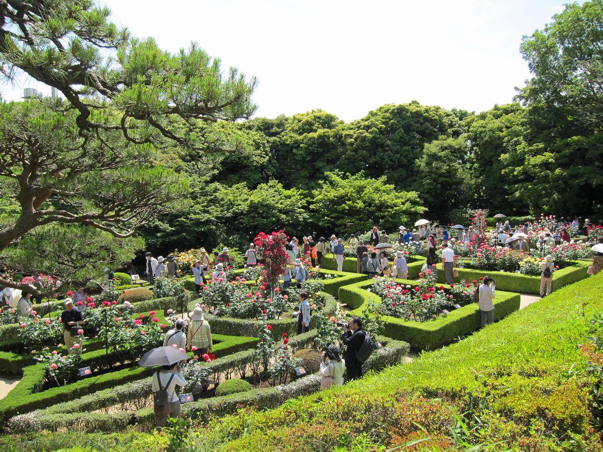 「旧古河庭園」カテゴリ一覧|SABOの東京名所写真