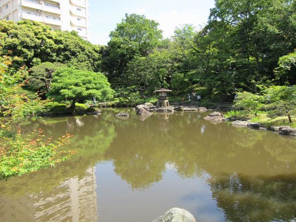 旧古河庭園・日本庭園1〔フリー写真〕