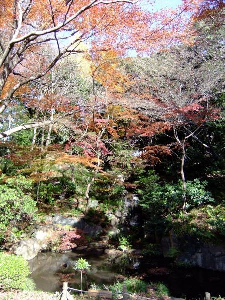 日本庭園15〔フリー写真〕
