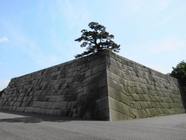 皇居東御苑21〔フリー写真〕