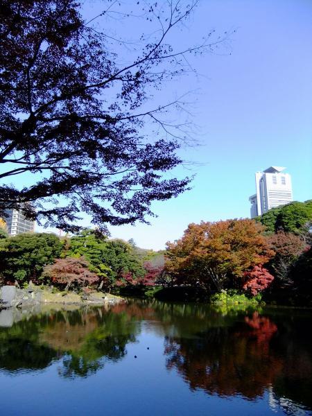 小石川後楽園6〔フリー写真〕