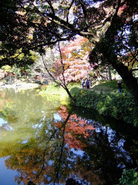 小石川後楽園18〔フリー写真〕