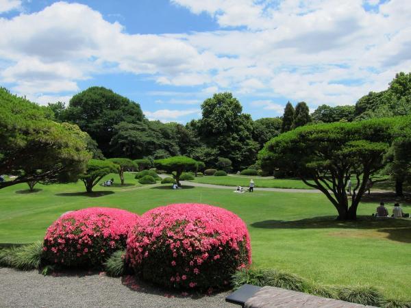 新宿御苑〔フリー写真〕