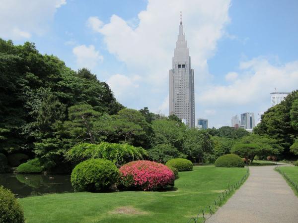 新宿御苑 日本庭園1〔フリー写真〕