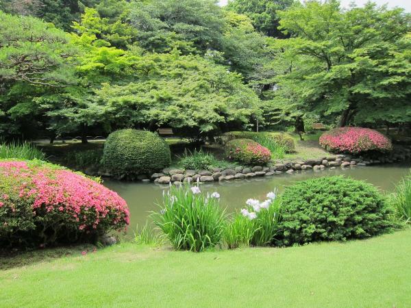 新宿御苑 日本庭園4〔フリー写真〕