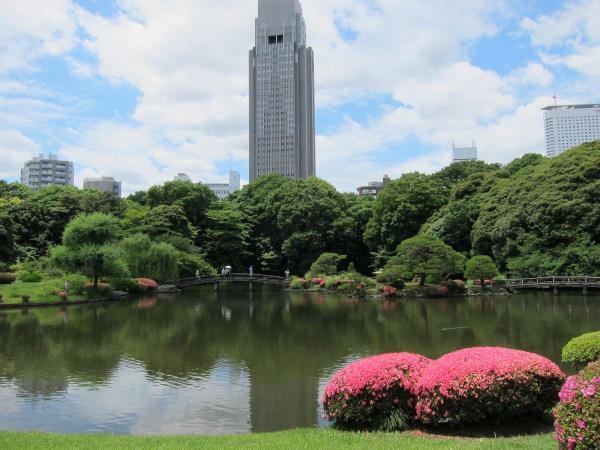 新宿御苑 日本庭園5〔フリー写真〕