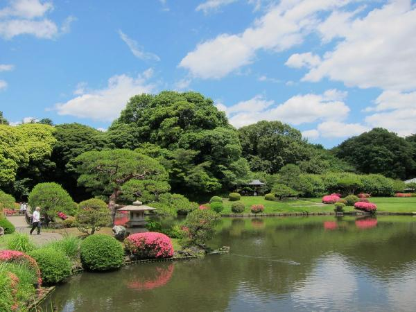 新宿御苑 日本庭園6〔フリー写真〕
