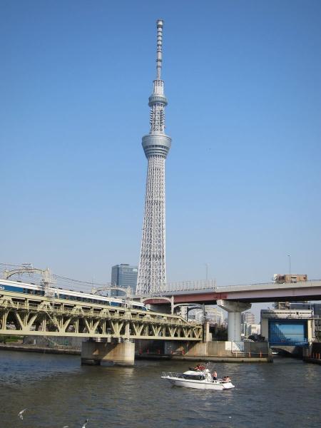 隅田川と東京スカイツリー5〔フリー写真〕