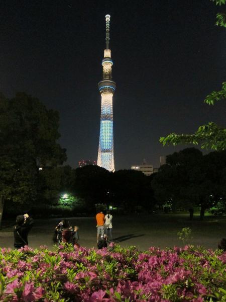 東京スカイツリー・ライトアップ1〔フリー写真〕
