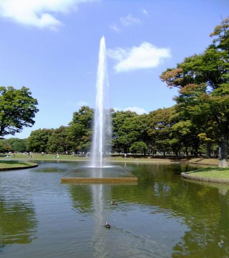 代々木公園 噴水広場4〔フリー写真〕