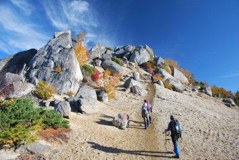 砂払岳への道