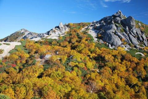 薬師岳の秋