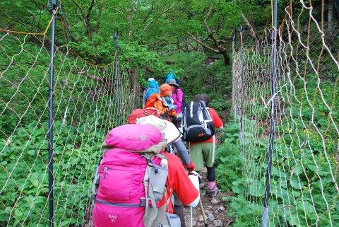 登山道沿いの柵