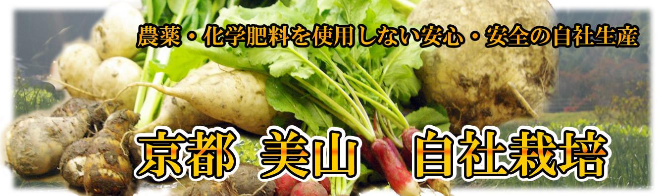 banner_miyama01.jpg