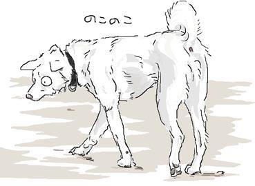 いじゅものひ1