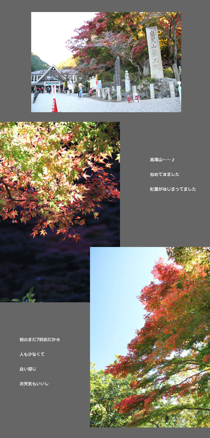 hennsyuu-takao1.jpg