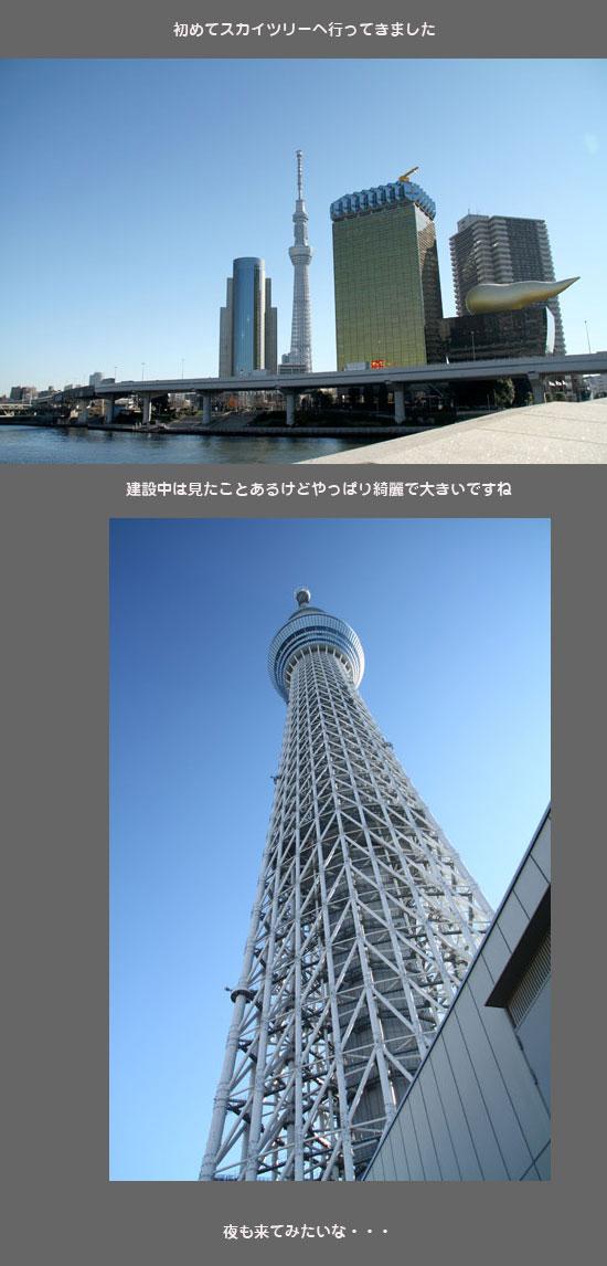 skytreeh1.jpg