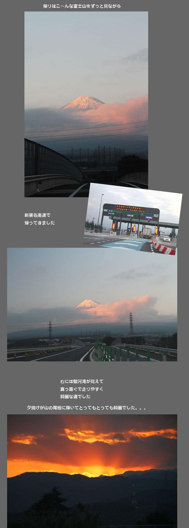 tanukikoh3.jpg