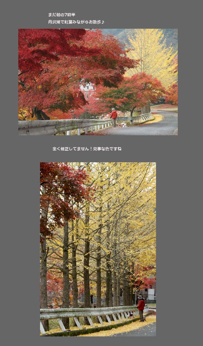 tanzawako111.jpg