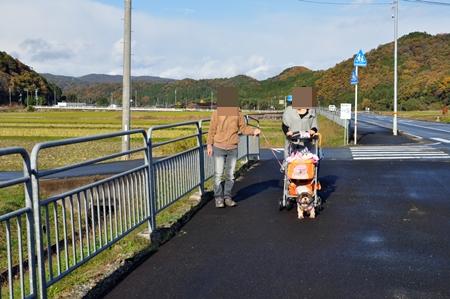 さくら2012.11 (41)