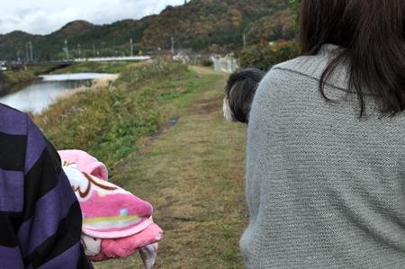 さくら2012.11 (3)