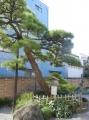 H261016shinagawa08.jpg