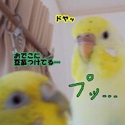 s-may_2.jpg
