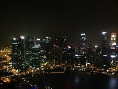 シンガポ2